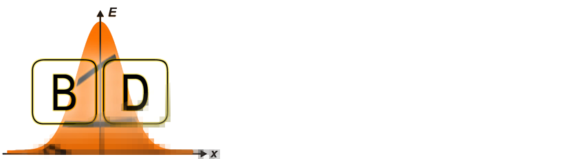 the basketball distribution