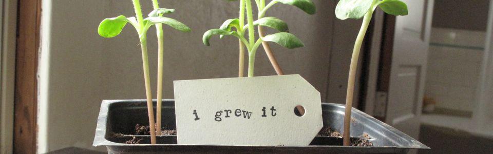i grew it