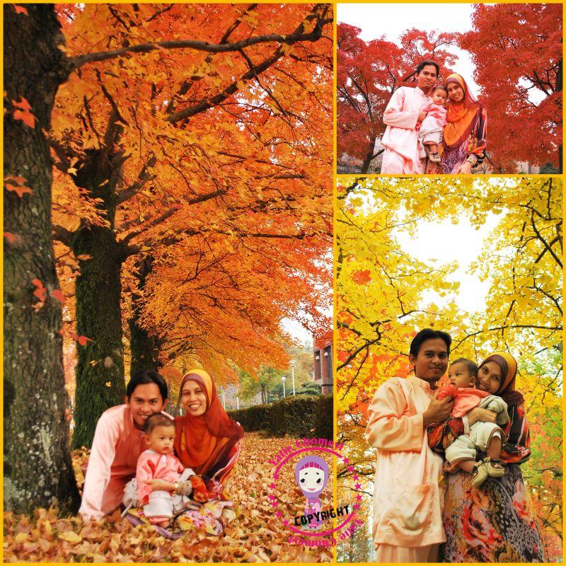 http://2.bp.blogspot.com/_c3es7FyunLI/TIcO6hya6jI/AAAAAAAAIjM/LVKIZnLaQoY/s1600/autumn-raya.jpg