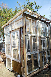 Sparta savings recycled window greenhouse for Reclaimed window greenhouse