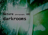 Nature photography on darkrooms