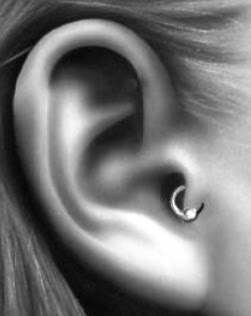 The tragus piercing is located  Ear Cartilage Piercing Tragus