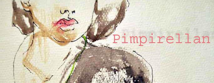 Pimpirellan- En blogg om ditt & datt
