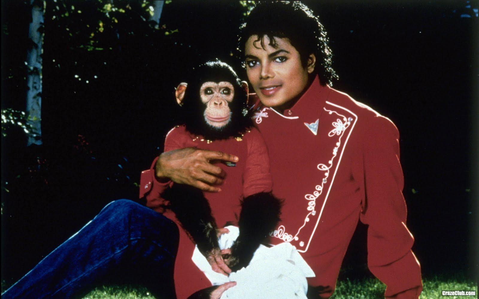 http://2.bp.blogspot.com/_c72kc4JbsgY/TOFFx_KoKAI/AAAAAAAAENA/k_kTW6A43o4/s1600/Michael+Jackson+Wallpaper+%252824%2529.jpg