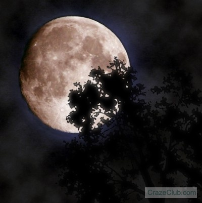 2068563549 bfe5452c7b Amazing Moon Photography