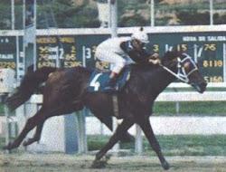 El Corsario (1972): segundo triple coronado venezolano