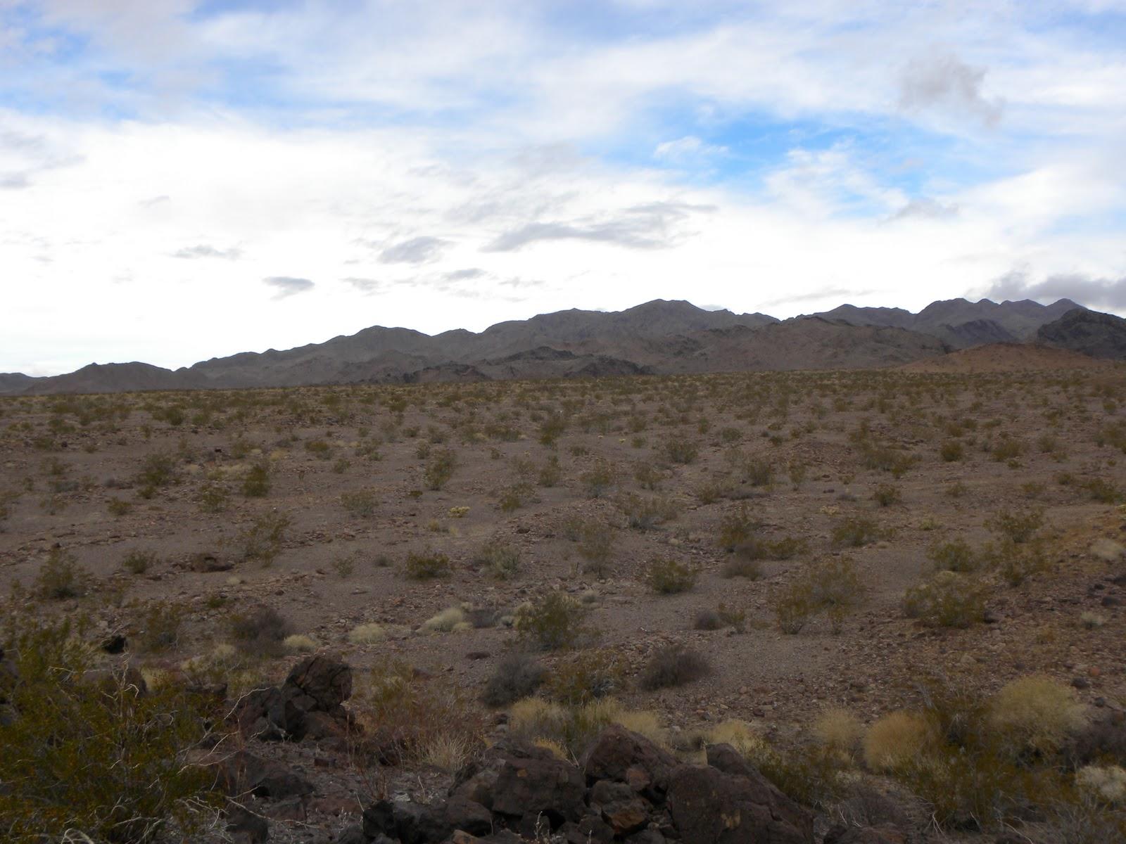 Mojave Desert Blog December 2010