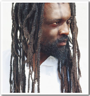 1000  images about Dreadlocks: neglect, free-form, natural ...