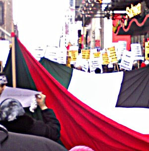 shot of enormous Palestinian flag and part of the crowd at the protest
