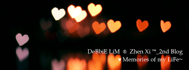 DeBbiE LiM  ®  Zhen Xi ™_2nd Blog