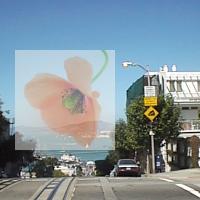 PyWin32とImageMagickで半透明にして重ね合わせた画像