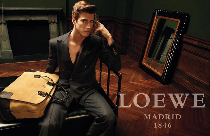 [Loewe+2009]