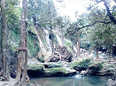Sup Chom Phoo,  Arboretum