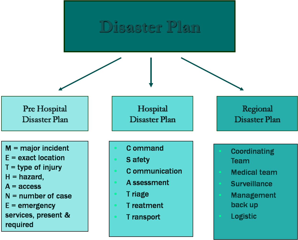 hospital disaster plan Hospital emergency management the safety officer wrote the disaster plan what am i supposed to do hospital emergency management has changed over the past few years.