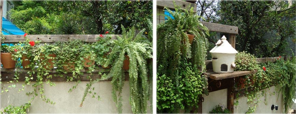 jardim vertical no sol:Esse é o máximo super fácil e barato de fazer! Aqui tem o passo a