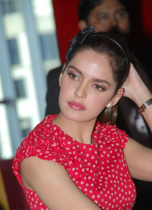 shazahn padamsee new from event unseen pics