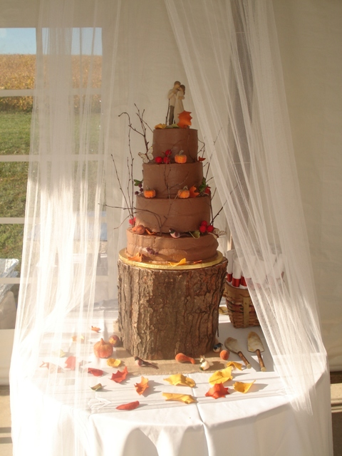 Fall Rustic Wedding Cake Chocolate Cherries cake with Chocolate