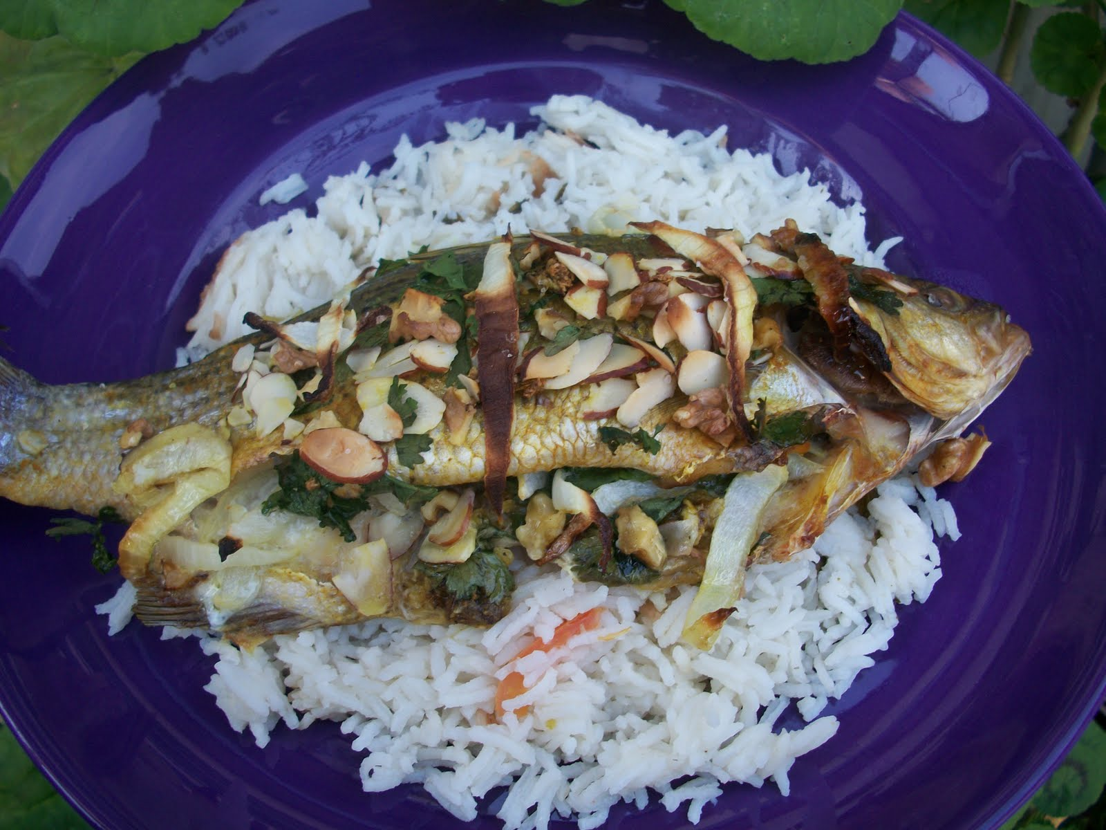 Pomegranates and zaatar hamour mahshi arabian style stuffed fish hamour is a type of grouper that is commonly found in the waters of the persian gulf and is the fish of choice in a lot of gulf recipes forumfinder Gallery