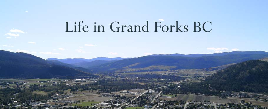 Life In Grand Forks Bc