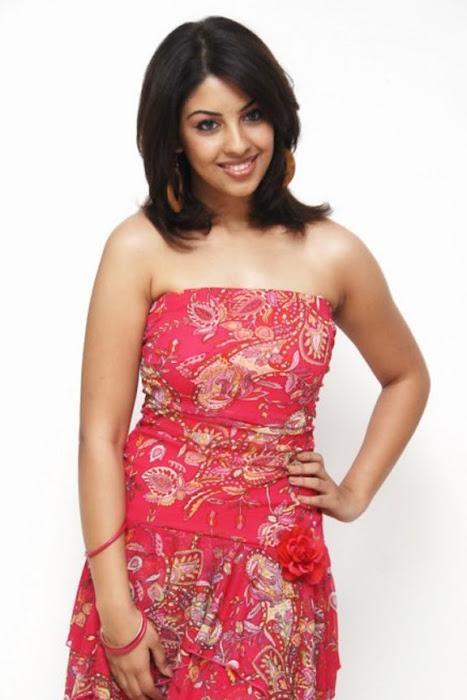 richa gangopadhyay from recent hot  photoshoot