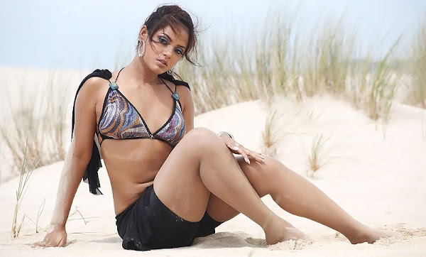 Neetu Chandra Spicy Pics gallery pictures