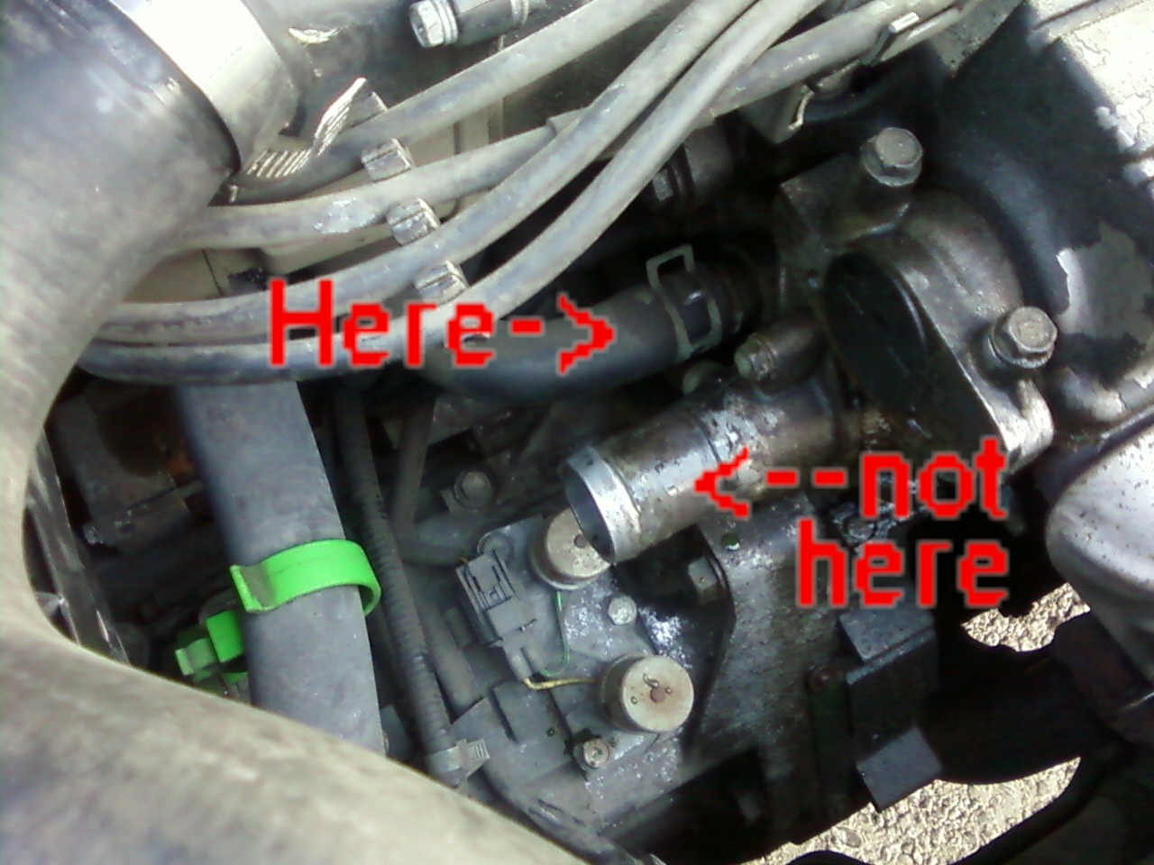 97 honda accord thermostat location
