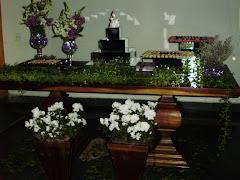 FESTA DE 15 ANOS  (04/04/2009)