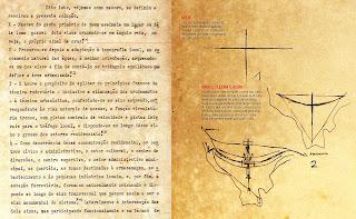 A inspiração do Plano Piloto no projeto original de Lúcio Costa