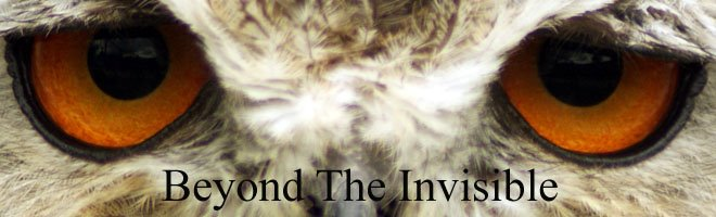 Beyond The Invisible