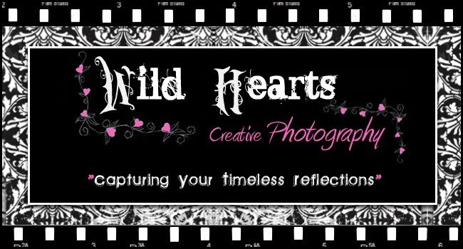 Wild Hearts Creative Photography