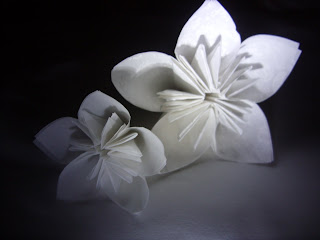 Jennifer katy designs origami paper flowers these are some experimental 3d flowers i made from some vellum and paper that are delicately printed with a white pattern mightylinksfo