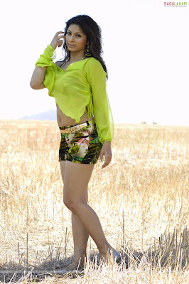 Actress Tanisha, Actress Tanisha navel, Actress Tanisha hot, Actress Tanisha spicy stills, Actress Tanisha blouse, Actress Tanisha navel, Actress Tanisha navel new, Actress Tanisha saree, Actress Tanisha hot images