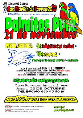 Fiesta de San Martin de Porres