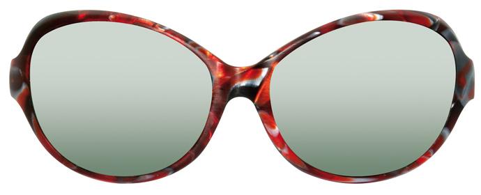 Alain Mikli AL1067 sunglasses