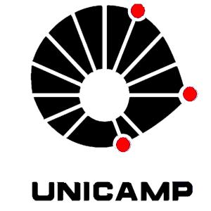 Vestibular UNICAMP 2009
