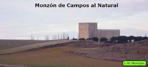 Monzón de Campos al Natural