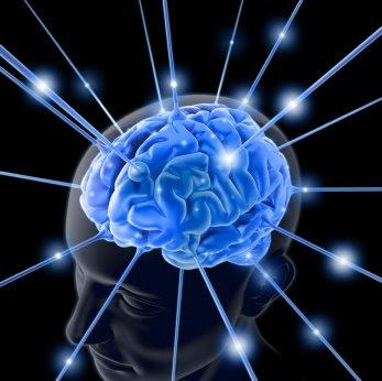 pengecilan otak