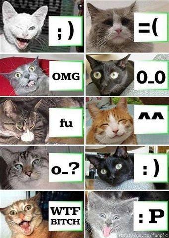 Imágenes muy graciosas.-