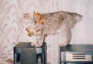 Новогодняя кошка
