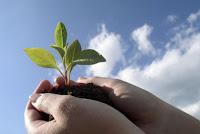 Экологическая акция: Купи Ebook – сбереги лес! Поставь ссылку - добавь свои 5 копеек!