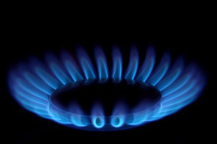 Domestic energy consumption patterns in Uttara Kannada District