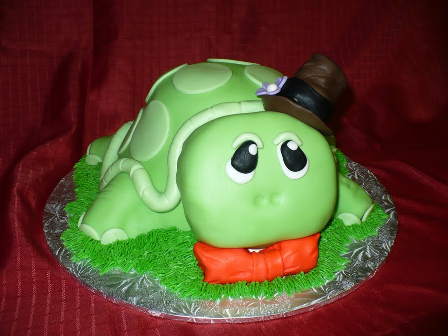 Turtle Birthday Cake Ideas
