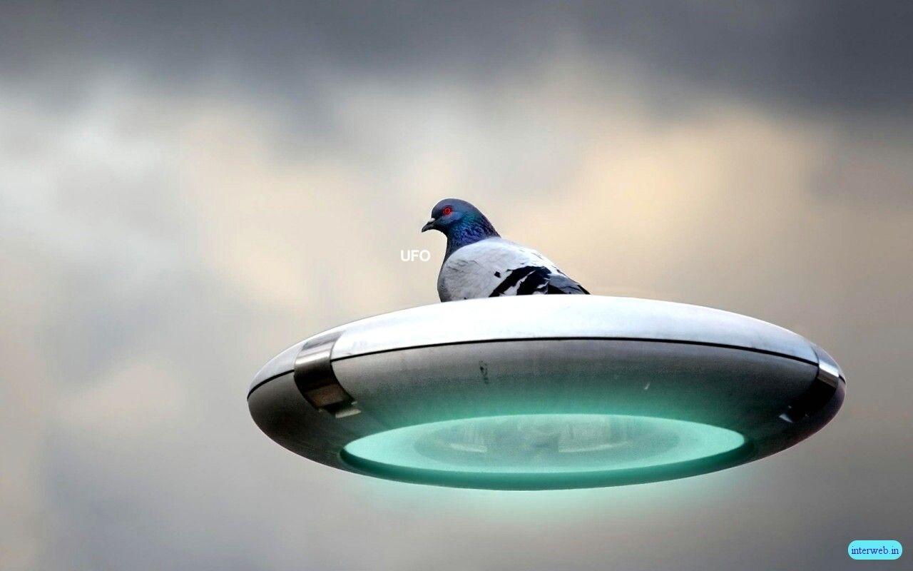 http://2.bp.blogspot.com/_cZuaghvCasw/THoE7s7_oyI/AAAAAAAAK3s/g-pzFHKq_O4/s1600/Funny-UFO.jpg
