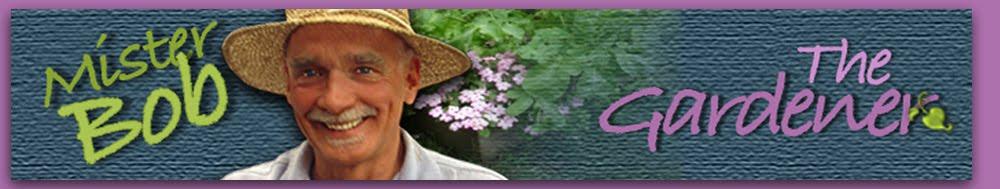 Mister Bob: The Gardener
