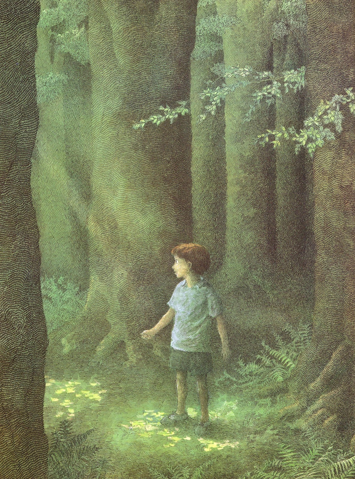 light in the forest book analysis - the light in the forest conrad richter's book, the light in the forest, is about a boy from  - analysis of a light in the forest by conrad richter a light in.