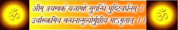 रावल ब्राह्मण राजस्थान