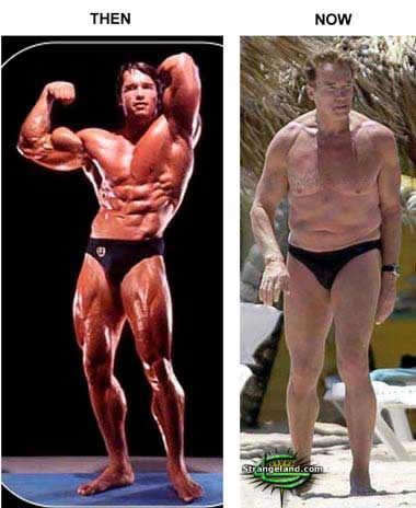 hgh cycle results before after.