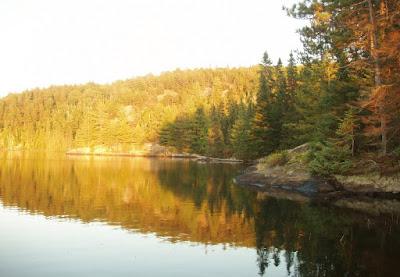 Mungo Says Bah! Bushcraft, Camping, Nature, Canoeing, Alqonquin Park