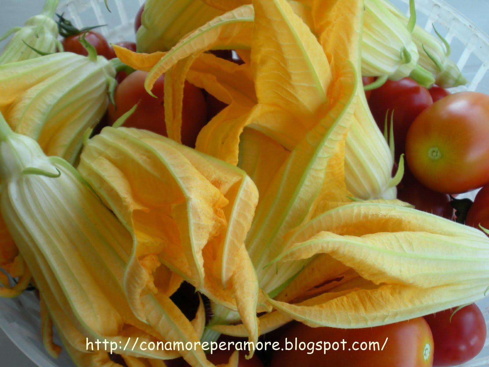 Cibi semplici fiori di zucchina e arrosticini da con for Fiori semplici