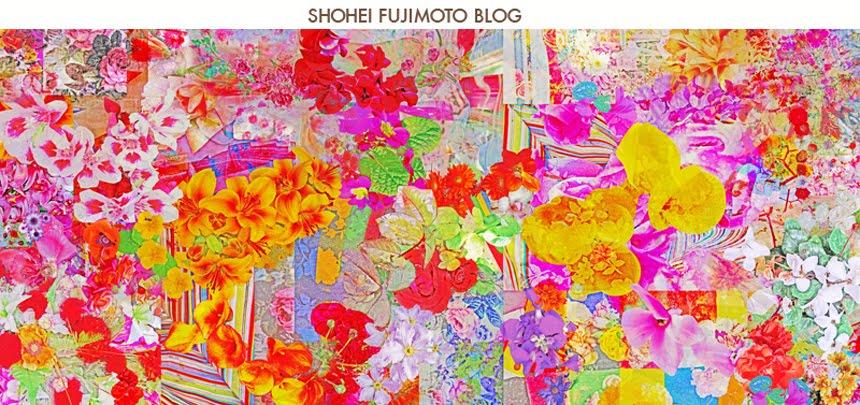 shohei fujimoto blog